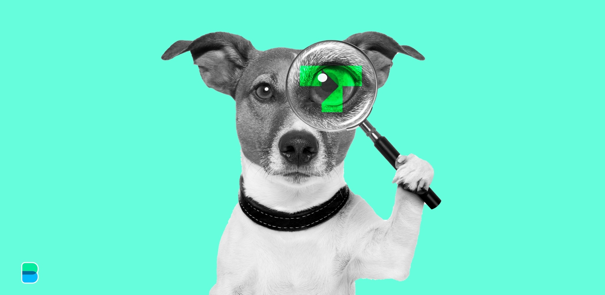 Trustly has 99 problems and the Watchdog is one